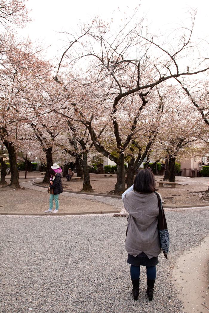 Mjolk_Kitka_Japan_2013--25