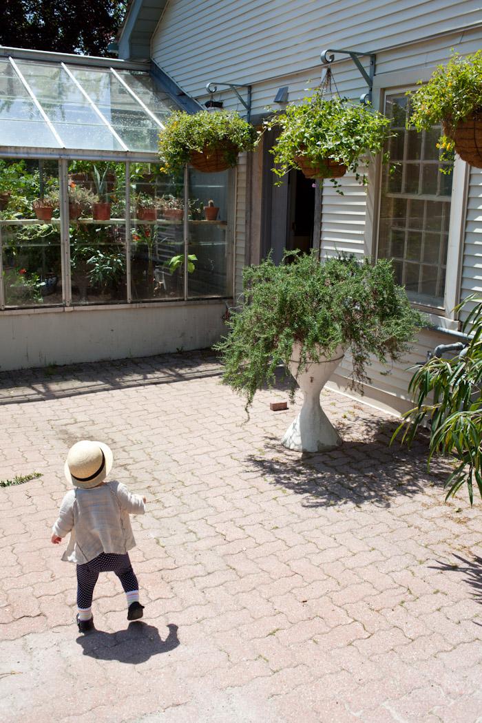 kitka_botanical_gardens-12