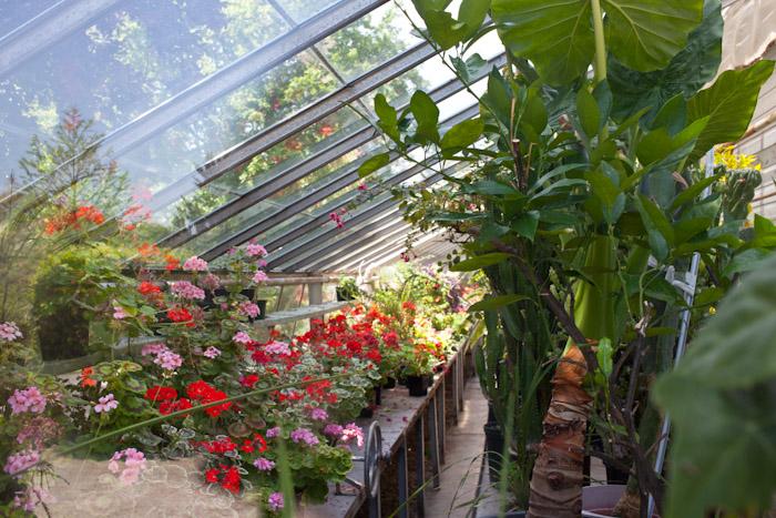 kitka_botanical_gardens-13