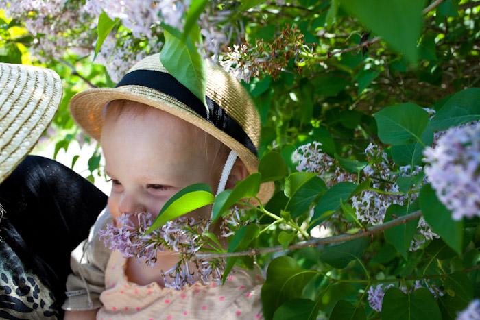 kitka_botanical_gardens-17