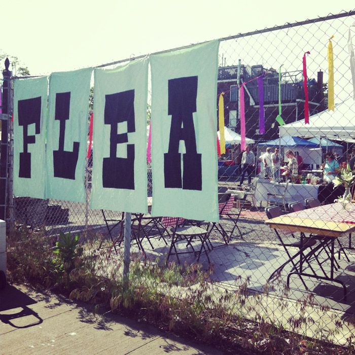kitka_junction_flea-1
