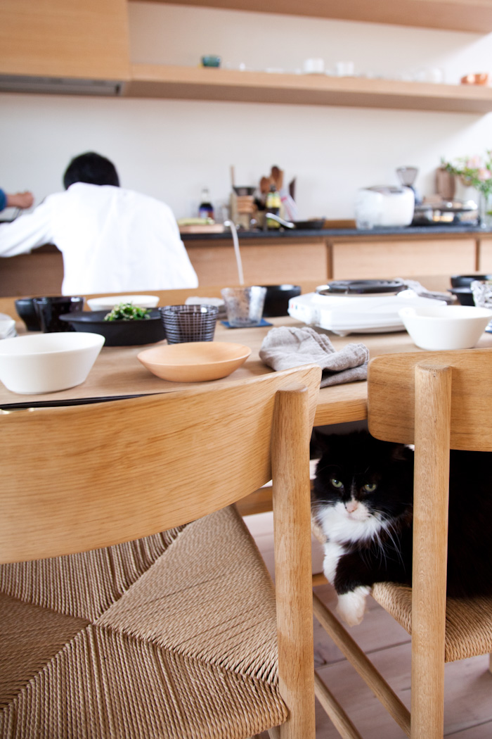 kitka_kazumi_tsuji_dinner-1