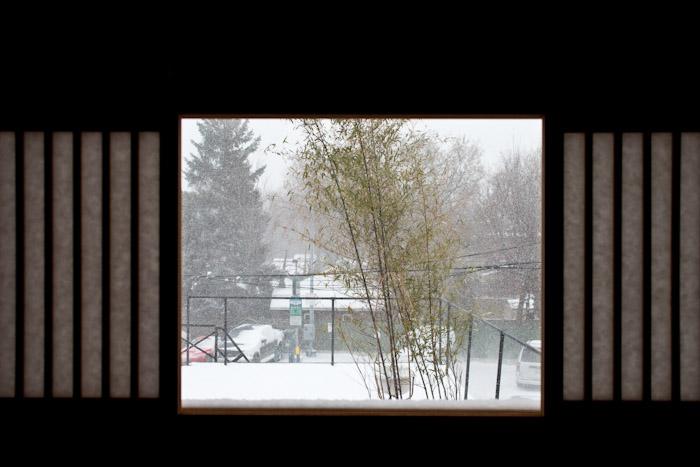 snow_toronto-1