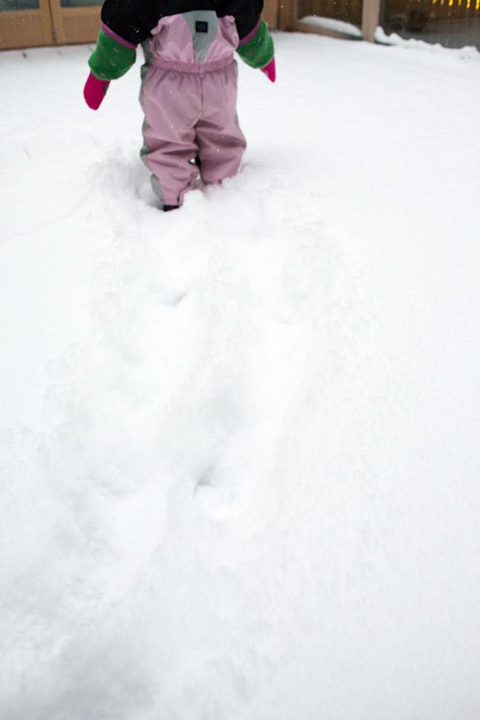 snow_toronto-4