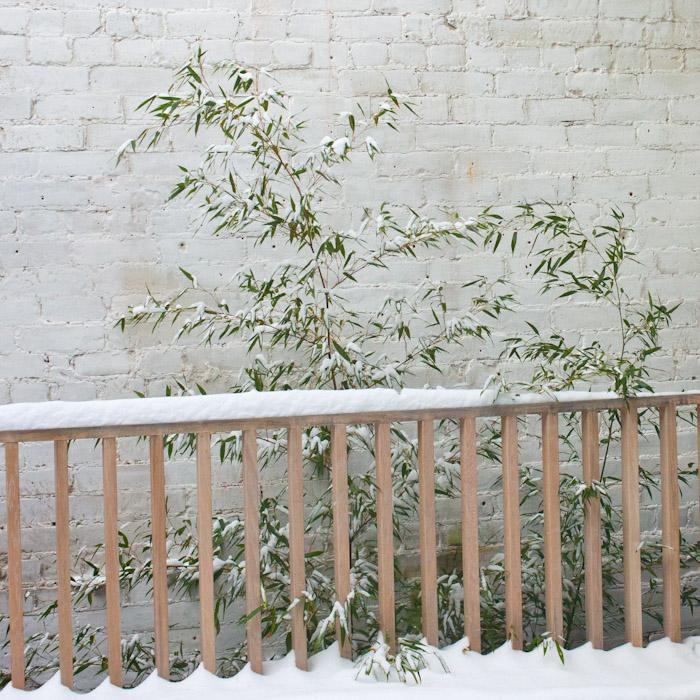snow_toronto-9