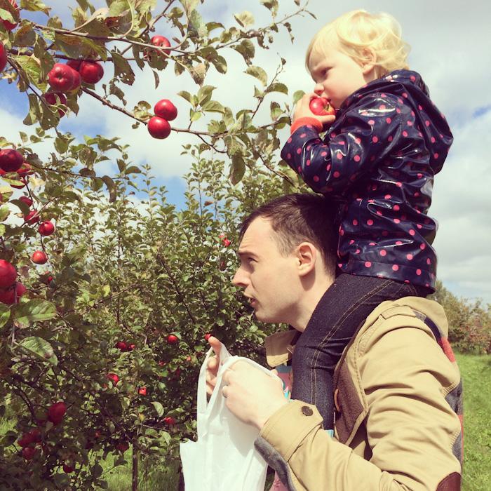 apple_picking-10