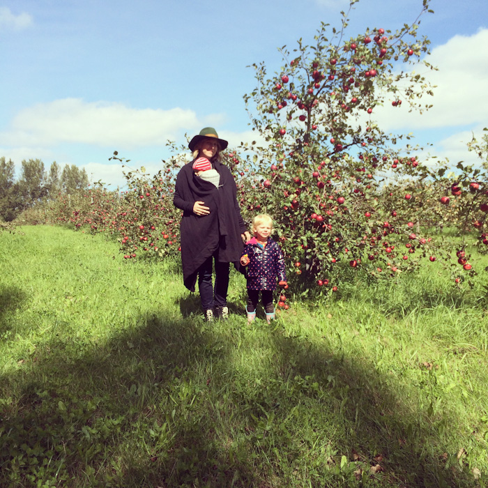 apple_picking-4