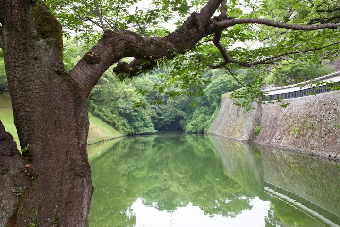 Japan_kumamoto_kitka-6